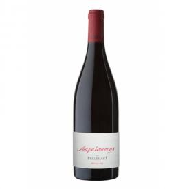 Côtes de Gascogne, Ampélomerix rouge 2014 Domaine de Pellehaut